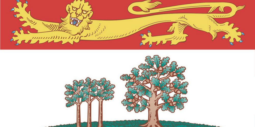 PNP Flag 100500